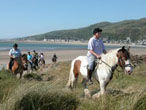 Pony trekking at Bwlch Gwyn, Fairbourne